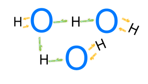 hydrogen and covalent bonds
